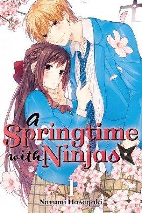 A Springtime With Ninjas - Постер